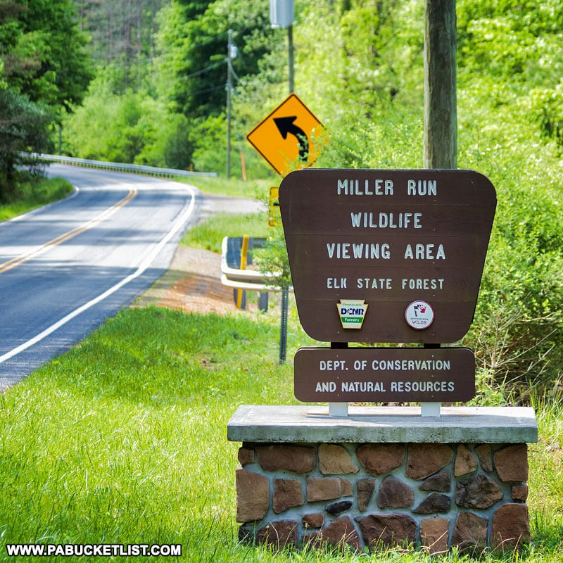 Miller Run Wildlife Viewing Area sign along Route 555 between Benezette and Driftwood.
