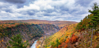 Pennsylvania Grand Canyon Fall Foliage