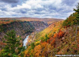 Pennsylvania Grand Canyon Fall Foliage