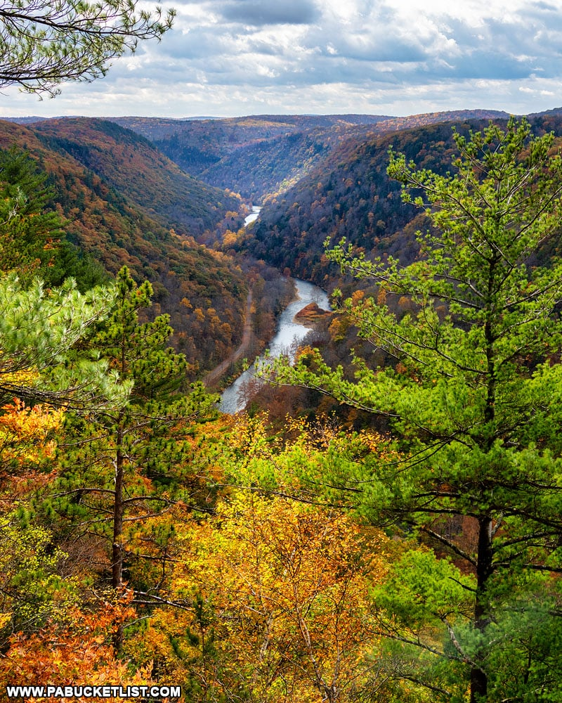 PA Grand Canyon fall foliage in October.