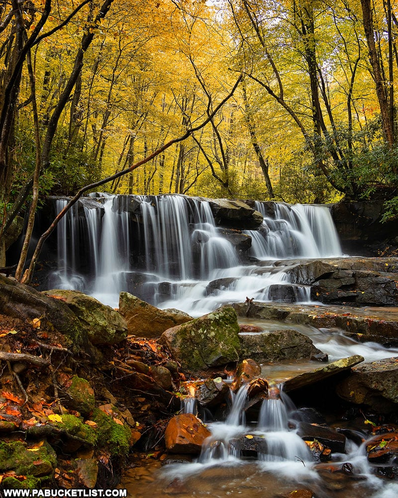 Fall foliage at Upper Jonathan Run Falls at Ohiopyle State Park.