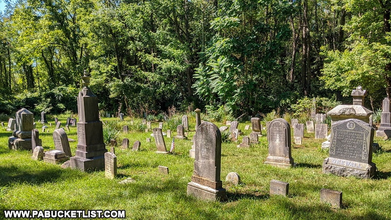 Old Alvira cemetery on State Game Lands 252.