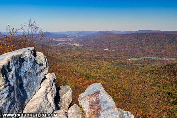 An autumn afternoon at Big Mountain Overlook in the Buchanan State Forest
