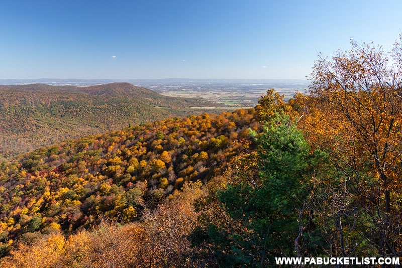 Big Mountain Overlook in the Buchanan State Forest.