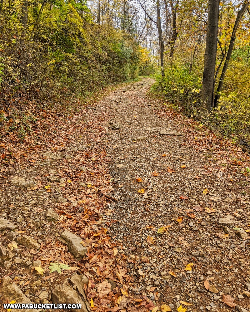 The unimproved trail leading to the middle and upper overlooks at Chimney Rocks Park in Blair County.
