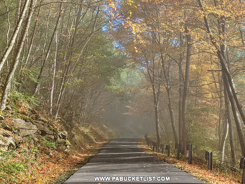 The road leading to Hyner View State Park.
