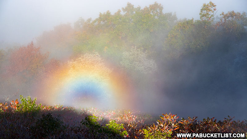 Rainbow in the mist at Hyner View State Park near Renovo PA