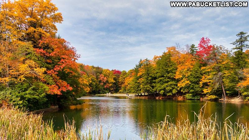 Fall foliage at Kooser Lake n Somerset County.