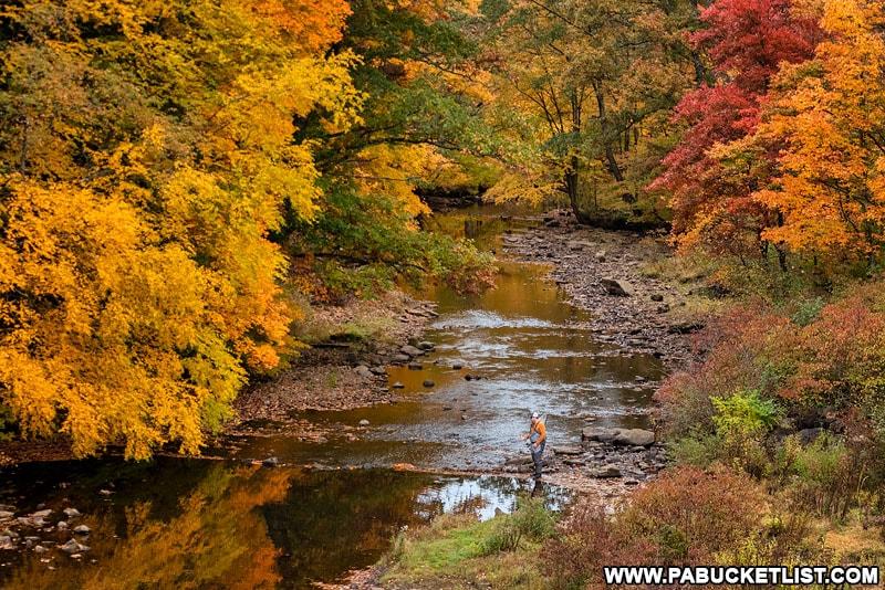 Fall foliage along Laurel Hill Creek at Laurel Hill State Park.