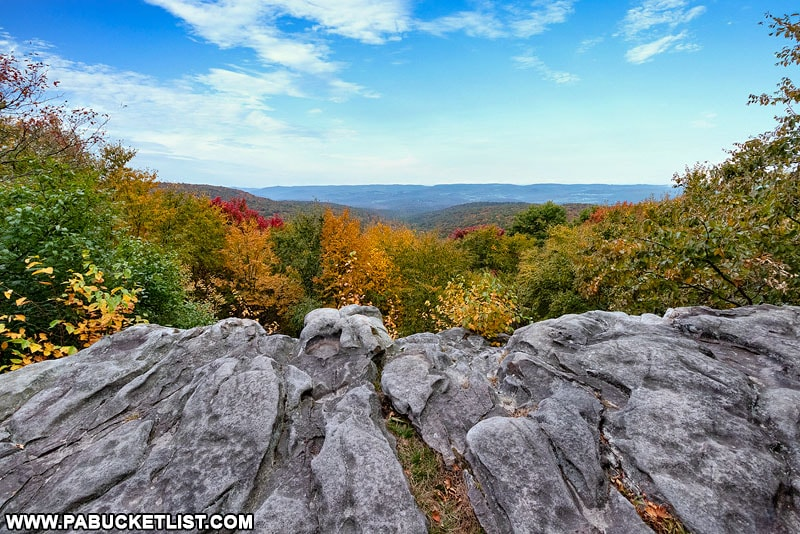Fall foliage along the Laurel Highlands Hiking Trail as it passes through Laurel Ridge State Park in Somerset County.