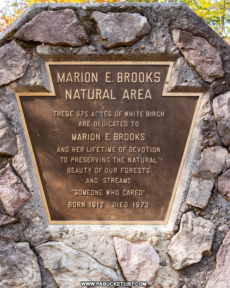 Marion Brooks Natural Area Memorial in the Quehanna Wild Area.