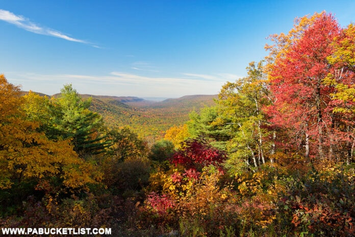 Fall foliage at New Lancaster Valley Vista in the Bald Eagle State Forest.