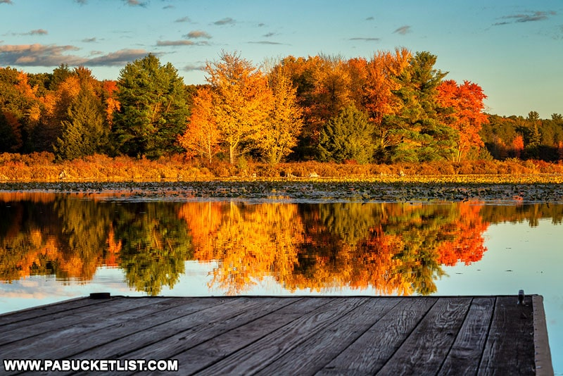 Fall foliage reflected off the lake at Black Moshannon State Park.