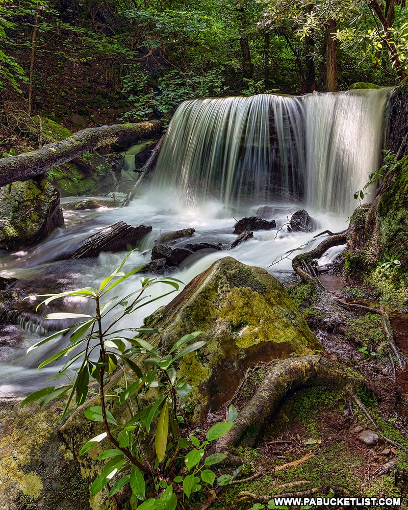 Table Falls next to Red Run Road in the Quehanna Wild Area.