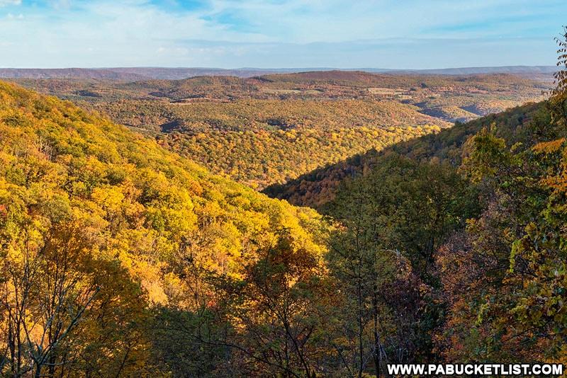 Warrior Ridge Vista in the Buchanan State Forest.