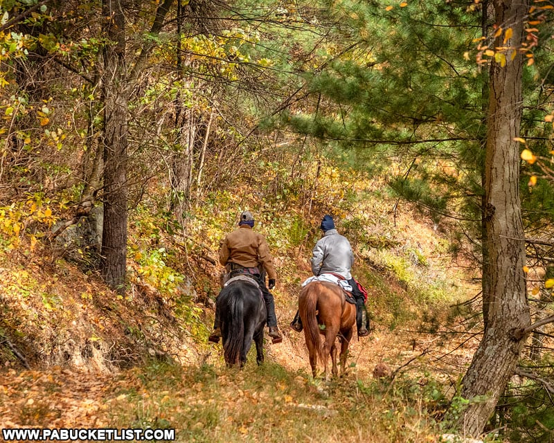 Horse riding along the Knobsville Road Trail at Cowans Gap State Park.