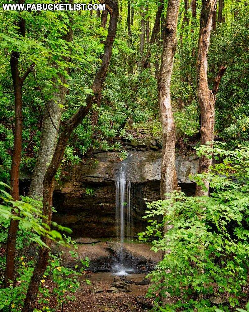 Looking at Hippie Shower Falls from the Great Allegheny Passage in the Laurel Highlands.