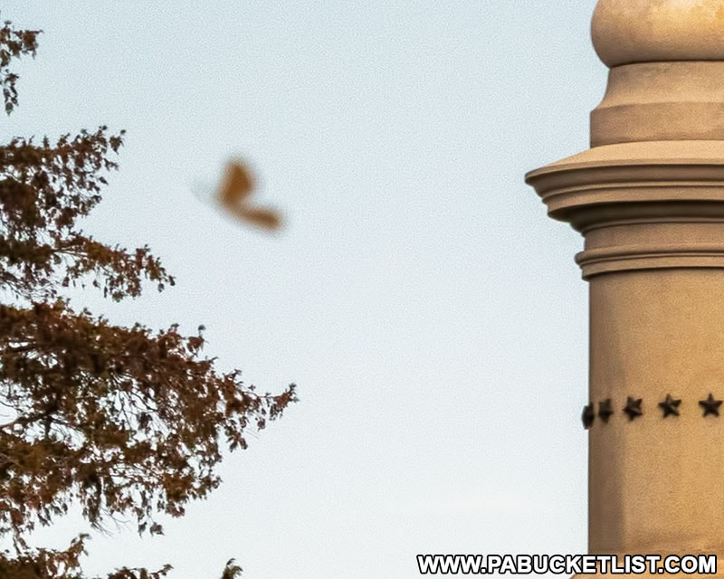 What appears to be an angelic figure flying over the Soldiers' National Cemetery in this photo from November 2020.