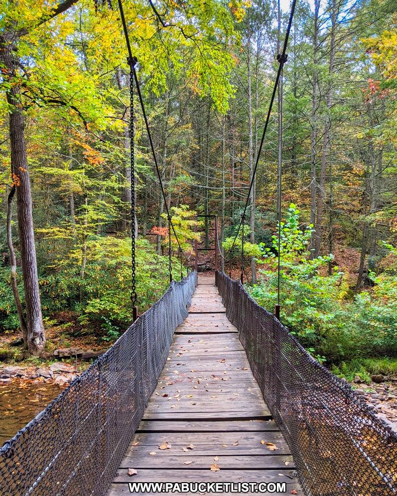 The suspension bridge over Trough Creek.
