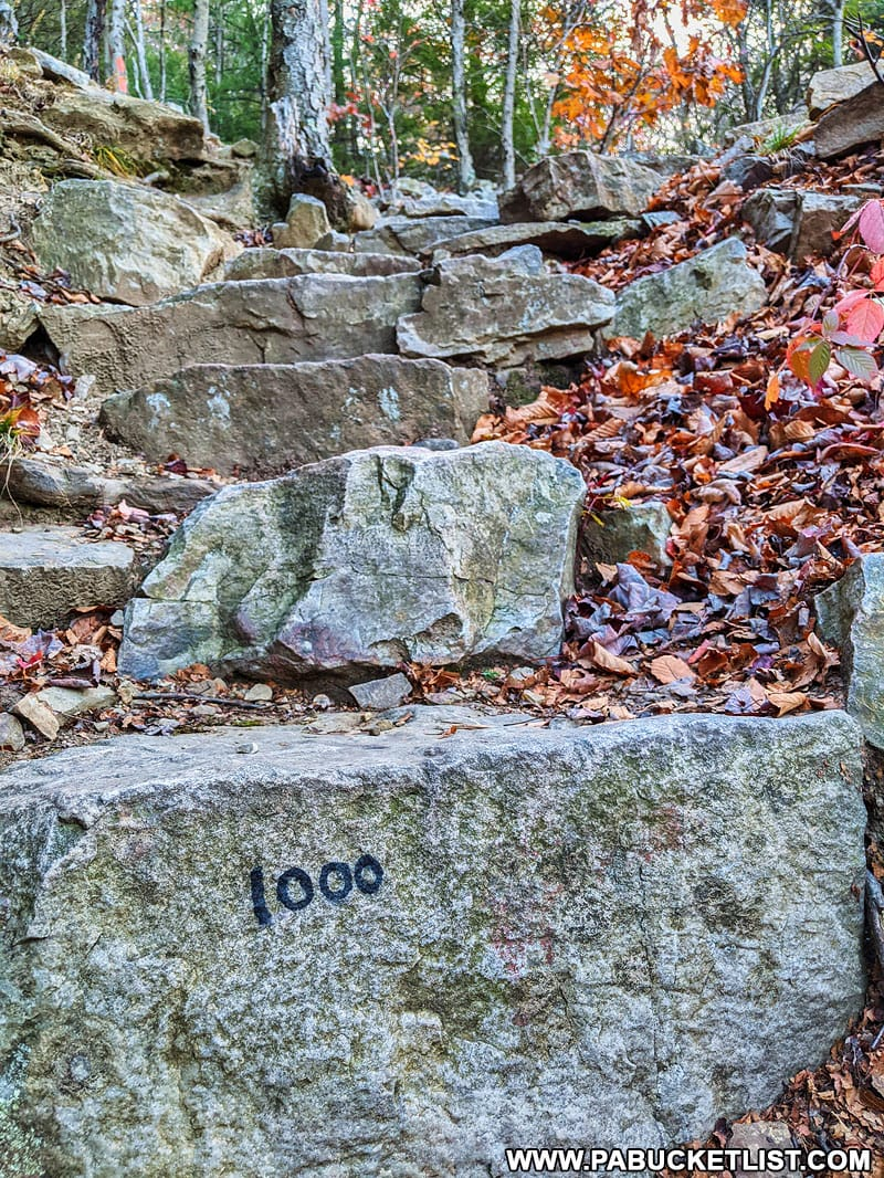 Step 1000 along the 1000 Steps near Mount Union.