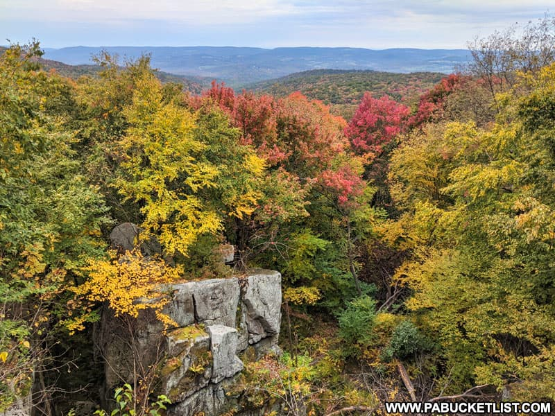 Fall foliage along the Laurel Highlands Hiking Trail at the Laurel Run Overlook.