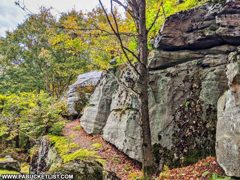 Rock formations at Laurel Run Overlook in Fayette County PA