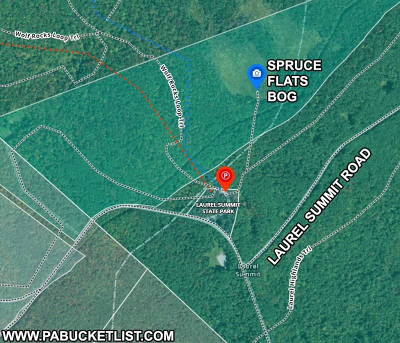 How to find Spruce Flats Bog in the Forbes State Forest in Pennsylvania
