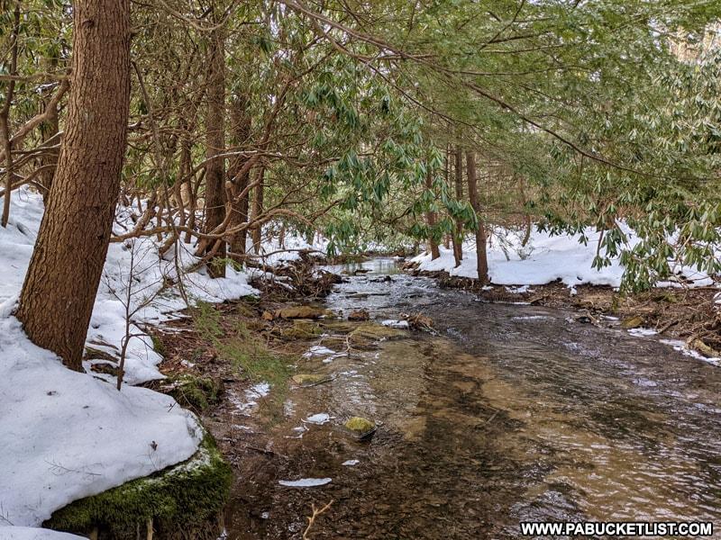 Bilgers Run near Bilgers Rocks in Clearfield County PA.