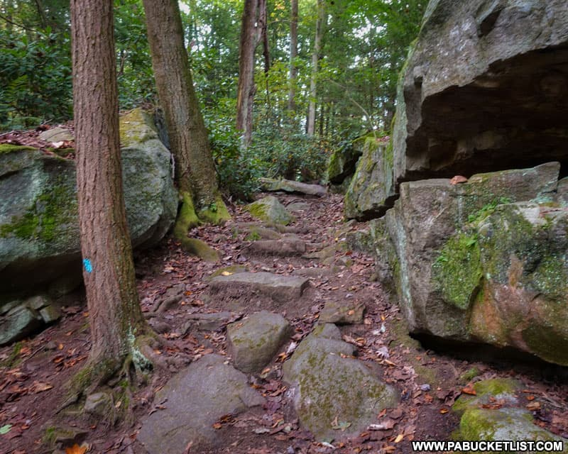 Boulders along the Ferncliff Trail at Ohiopyle State Park.