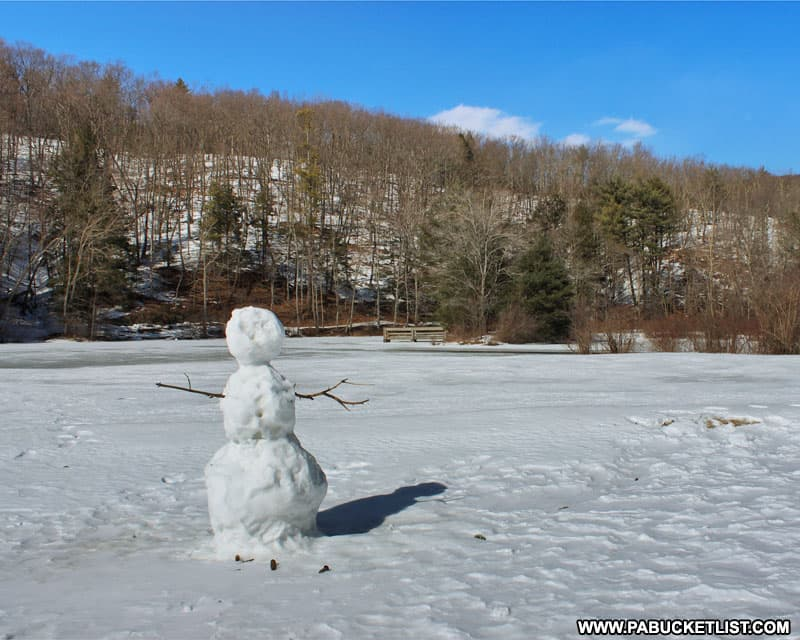 Snowman on the beach at Greenwood Furnace State Park.