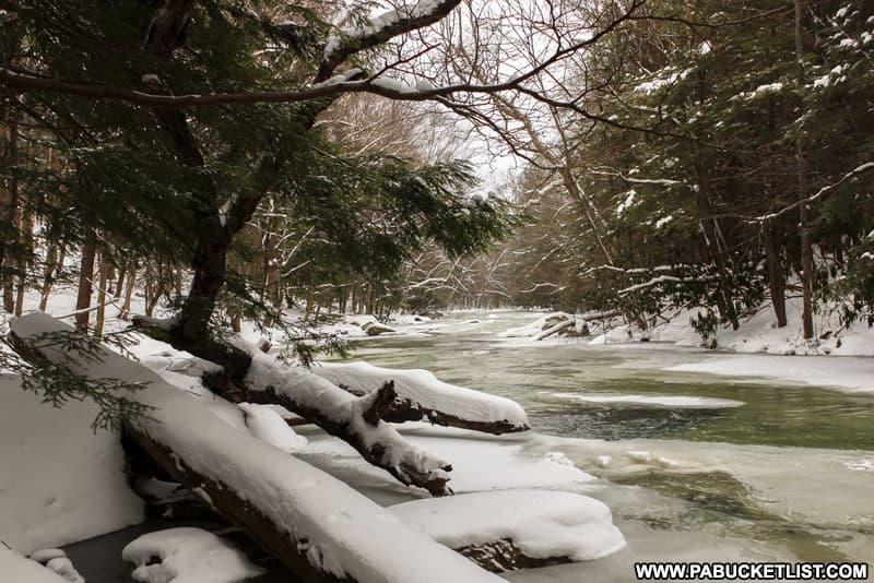 Laurel Hill Creek at Laurel Hill State Park.