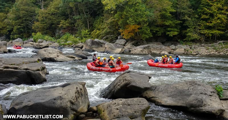 Whitewater rafters on the Youghiogheny River next to the Ferncliff Trail.
