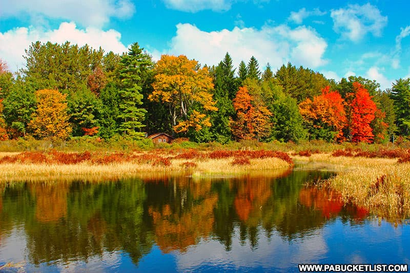 Fall foliage surrounding a rustic cabin at Black Moshannon State Park.