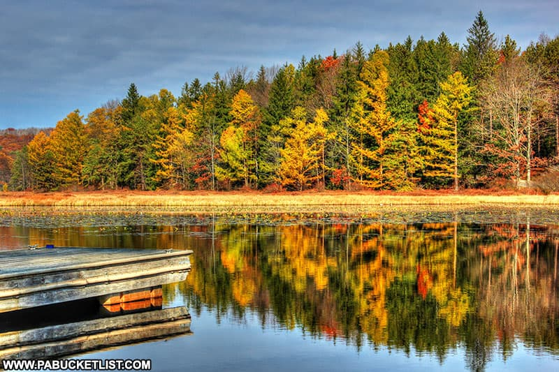 Fall foliage reflected off the surface of Black Moshannon Lake.