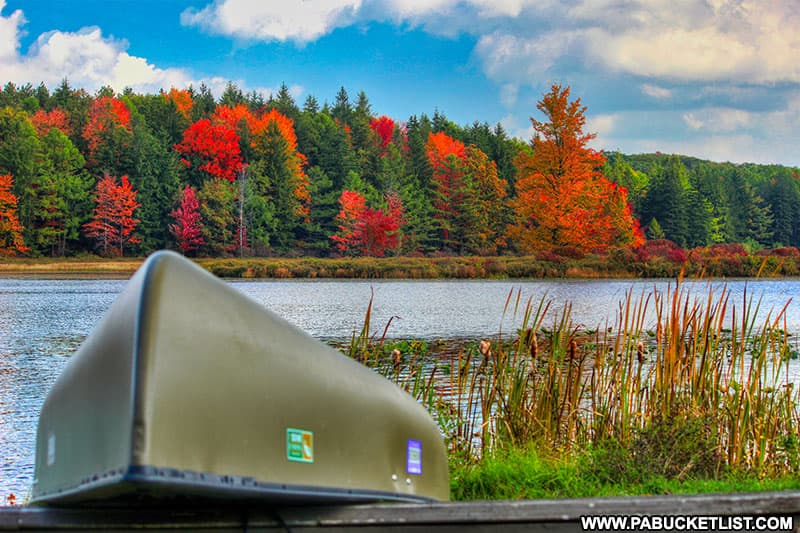 Fall foliage starting to appear at Black Moshannon State Park.