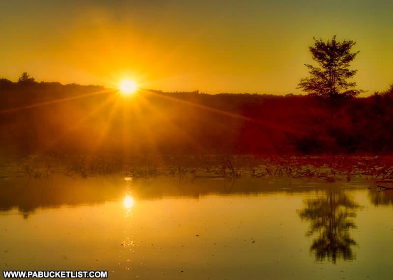 Sunrise at Black Moshannon State Park.