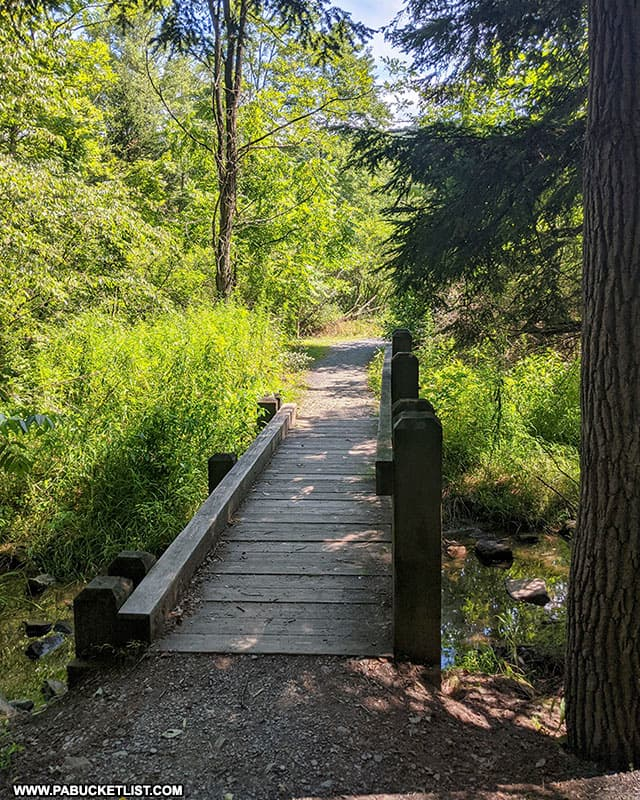 A bridge along the Lakeview Trail at Greenwood Furnace State Park.