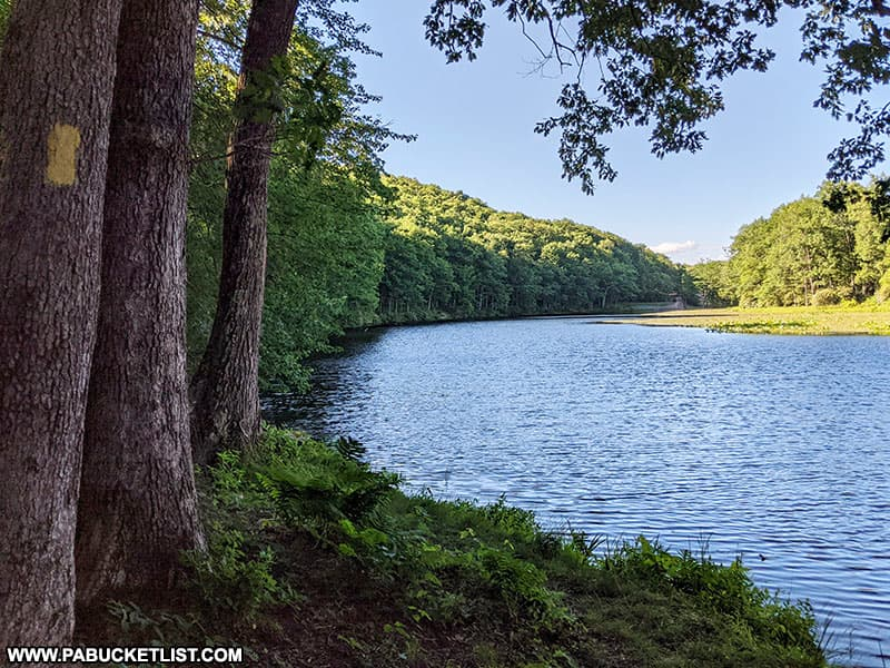 The Lake Trail at Black Moshannon State Park.