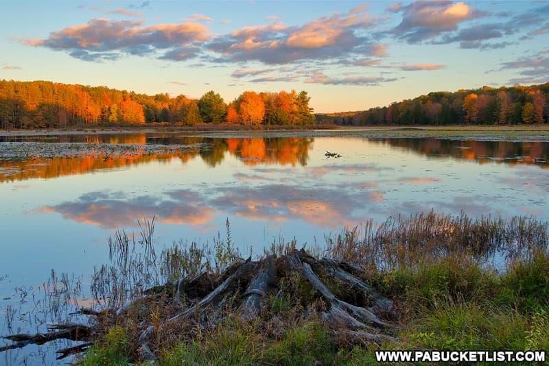 October sunset at Black Moshannon State Park.