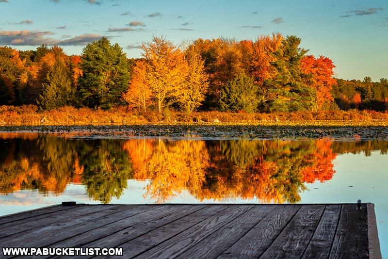 Autumn reflections on Black Moshannon Lake.