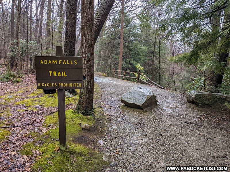 Adams Falls Trailhead at Linn Run State Park.