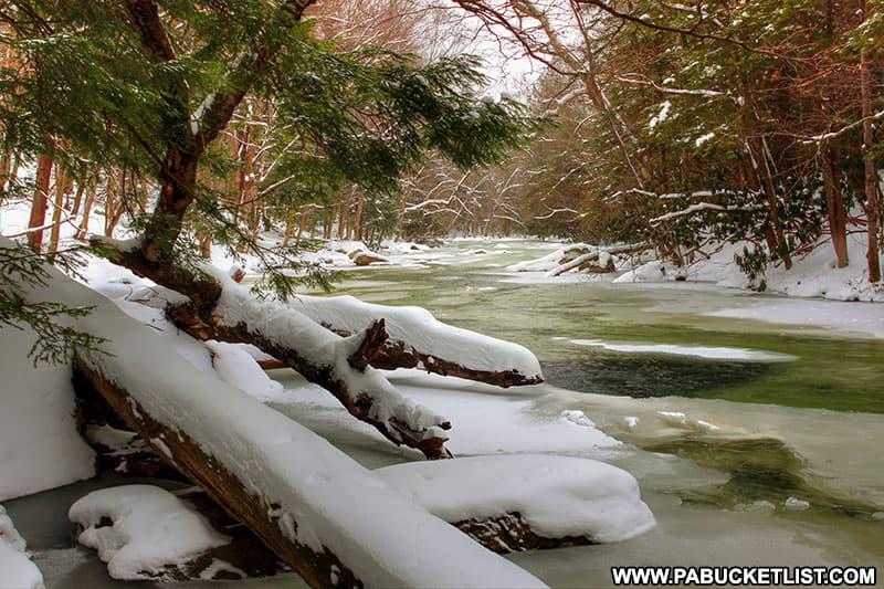 Winter along Laurel Hill Creek at Laurel Hill State Park.