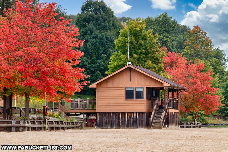 Fall foliage on the beach at Laurel Hill State Park.