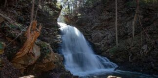 Little Shickshinny Falls on State Game Lands 260 in Luzerne County Pennsylvania