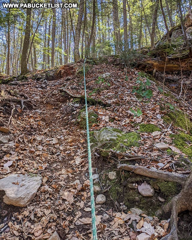 A trailside rope near Little Shickshinny Falls.