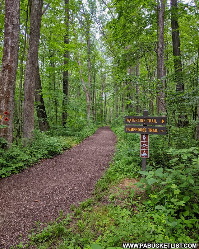 The Pumphouse Trail at Laurel Hill State Park.