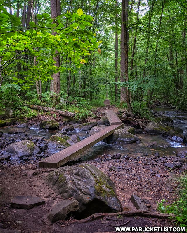 A stream crossing along the Tram Road Trail at Laurel Hill State Park.