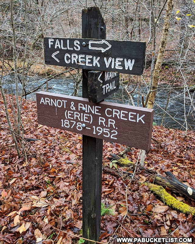 Sign marking the location of the Arnot and Pine Creek Railroad in the Tioga State Forest.