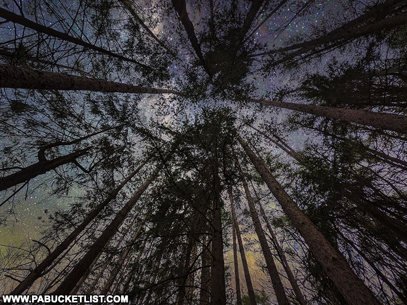 Starry night along the Colyer Lake Trail.