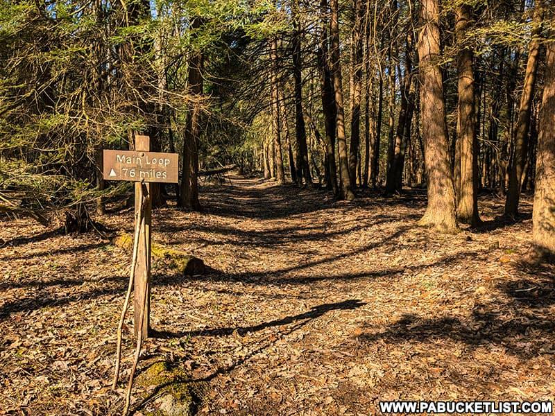 Fred Woods Trail trailhead.